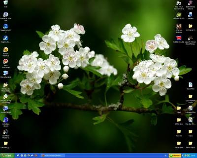 image file name: 2k3cb56e9531.jpg