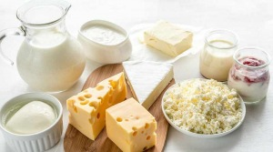 Mleko in mlečni izdelki za močne kosti in dobro zdravje? Zavedli so vas in še vedno vas zavajajo